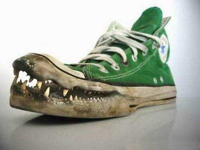 sepatu buaya dicomot di: noerna.blogspot.com