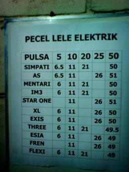 pecel lele elektrik???
