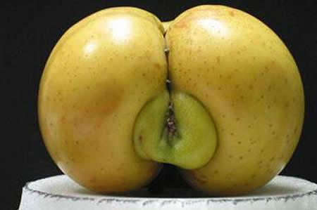 wew apel apa neh