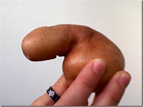 фото баушкиных половых органов