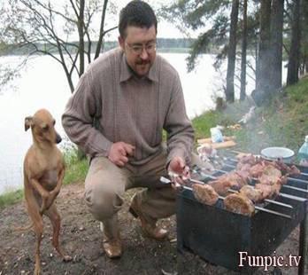 nemenin camping